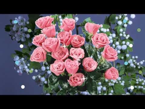Привітання з Днем Народження. З Днем Народження! Весна. З Днем Народження у травні! День Народження.