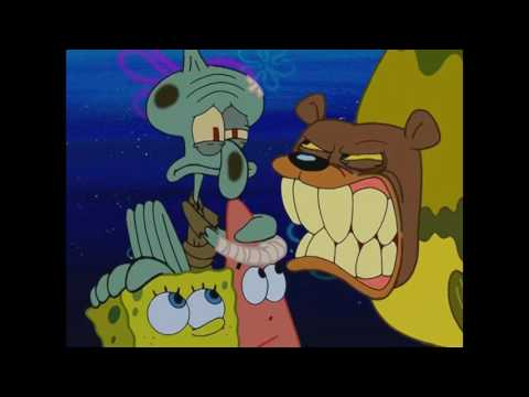 That was an oval, it has to be a circle - Spongebob Seabear