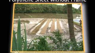 Rice Transplanter - 2