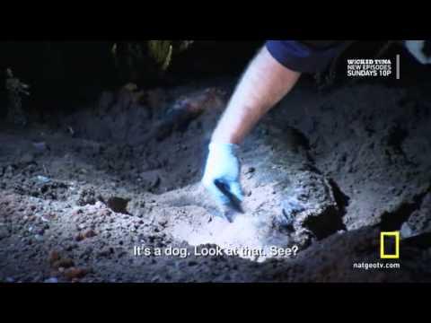 Navajo Cops - Season 1 - Episode 3