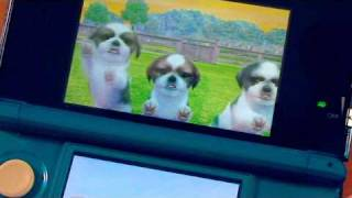 3DS REVIEW - Nintendogs + Cats (thebitblock.com)