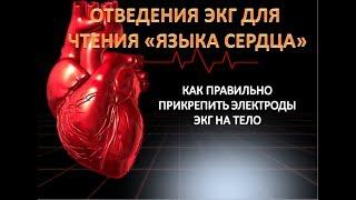 Крепление электродов для чтения языка сердца