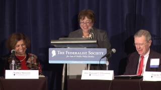 ROUNDTABLE: Areas of Constitutional Doctrine Transformed [Showcase Panel IV]