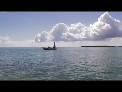 Fly Fishing Off Big Pine Key