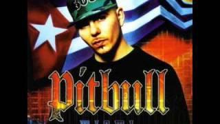 Pitbull Back up