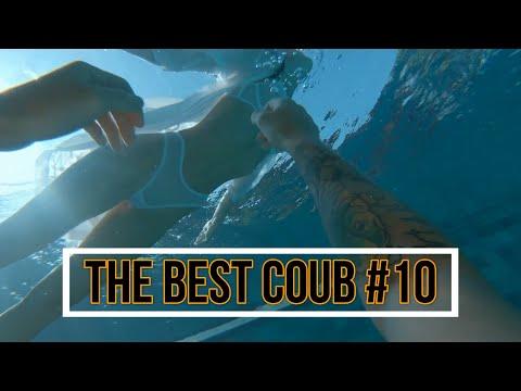 10 минут лучших приколов февраля| Best coub| Coub game & movie