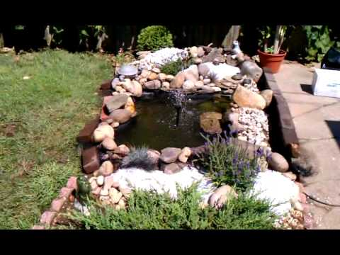 Outdoor Turtle Pond Youtube