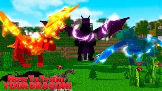 HOW TO TRAIN YOUR DRAGON - A DRAGON DIESBUT WHICH ONE 7 w Little Lizard
