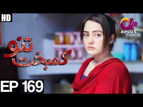 Kambakht Tanno - Episode 169 - A Plus ᴴᴰ Drama
