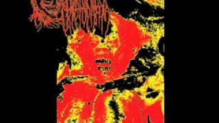 Embryonic Cryptopathia- Split w/ Blue Holocaust