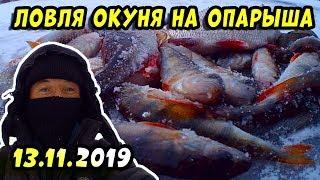 Ловля окуня со льда 2019 Зимняя рыбалка на мормышку в перволёдью