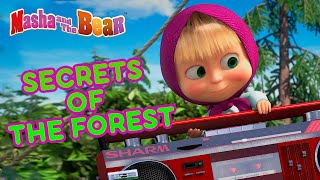 Masha and the Bear 🌲🧚♀️ SECRETS OF THE FOREST 🧚♀️🌲 Best magical cartoon episodes 🎬