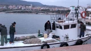 """""""Yalı Balıkçılarının Mezgit Avı"""" Belgeseli"""