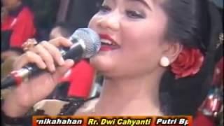 Video Langgam Ali Ali_Voc. Palupi Marasiwi - Campursari OHM live Pojok Pereng download MP3, 3GP, MP4, WEBM, AVI, FLV Februari 2018
