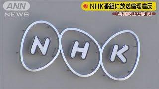 "NHKに放送倫理違反""レンタル家族""扱った番組巡り(20/03/31)"