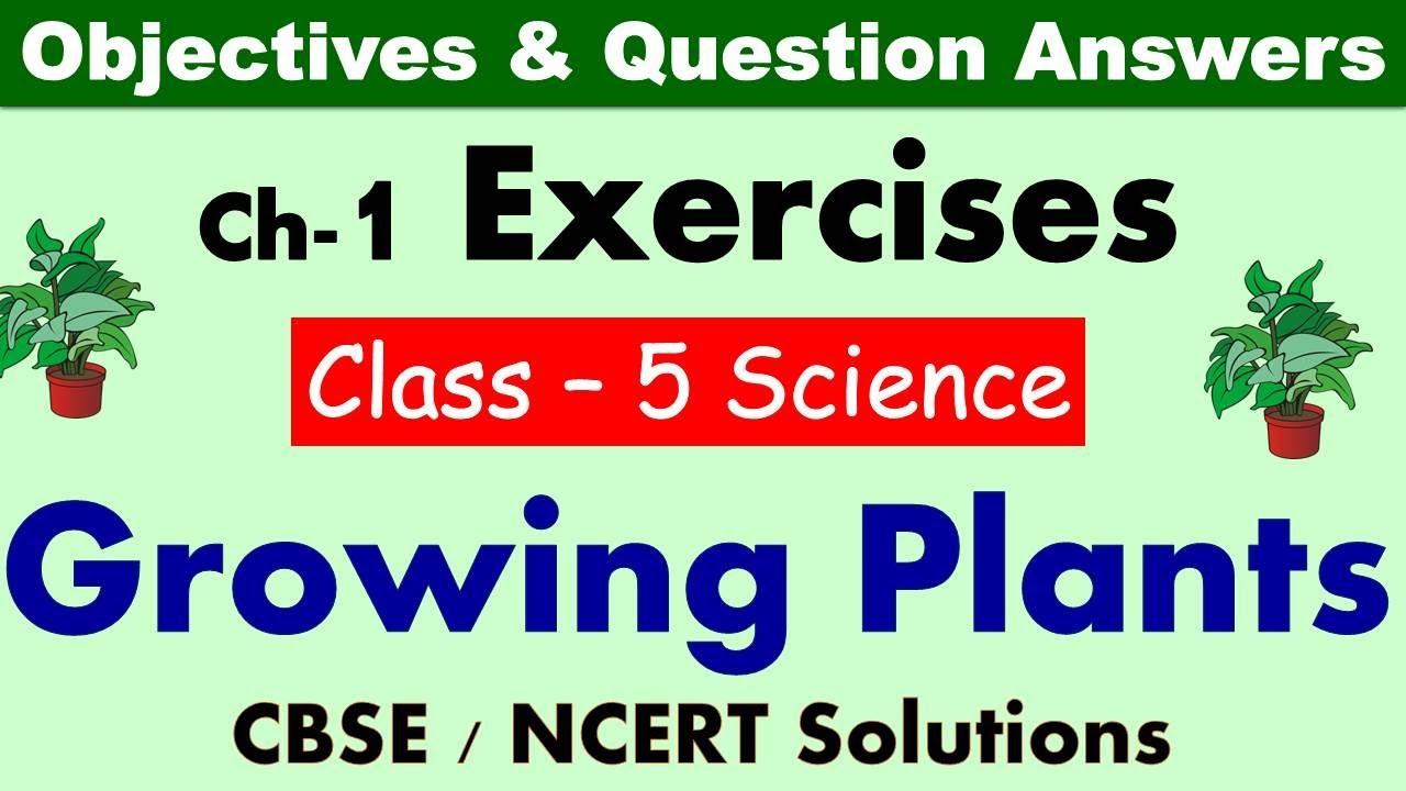 Growing Plants Class 5 Science Exercises Question Answers Cbse Ncert Syllabus Worksheet Youtube [ 720 x 1280 Pixel ]