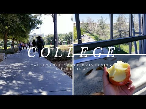 A Day in My Life: College Edition! | CSU Northridge