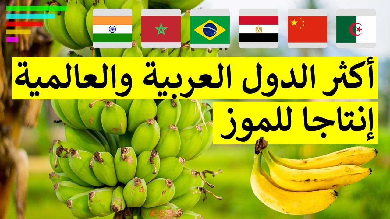 اكثر الدول العربية والعالمية إنتاجا للموز Youtube