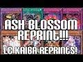 ASH BLOSSOM REPRINT! RAIGEKI, BEELZE, & CRITIAS FUSION EFFECT!! Legendary Collection Kaiba Reprints!