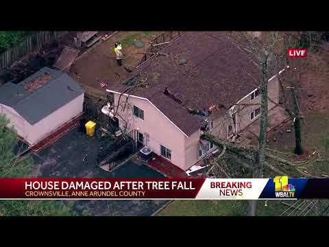 Tree crashes through house in Crownsville