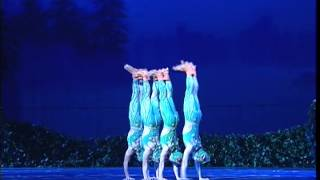 "Chinese Swan Lake: ""The four little swans turned into four small frogs"""