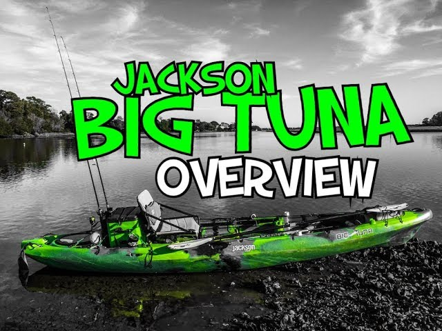 Don't miss this Jackson Big Tuna Overview