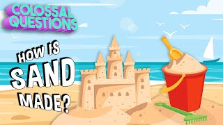 Where Does Sand Come From? | COLOSSAL QUESTIONS