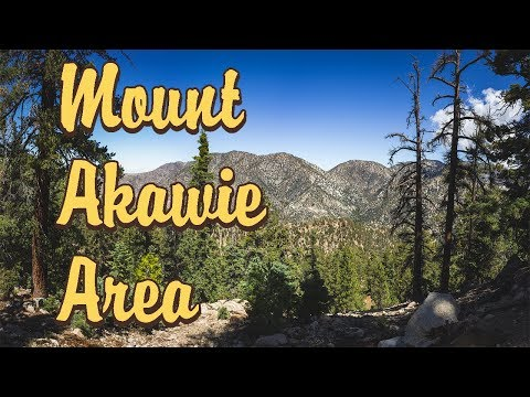 Mount Akawie Area - Angeles National Forest