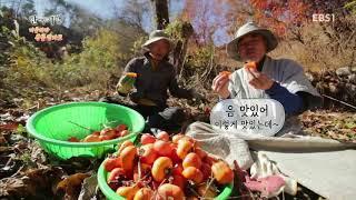 한국기행 - Korea travel_마음따라 산골암자로 1부 내 어린 시절 같아라_#001