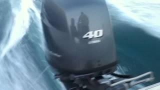 Motore fuoribordo Yamaha F40DETL