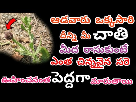 Ayurvedam Beauty Tips For Girls Amp Ladies  Bodatharam Specialist   In Telugu  Thinking About Facts