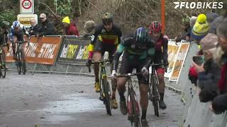 Dog on Course: 2019 Vlaamse Druivencross
