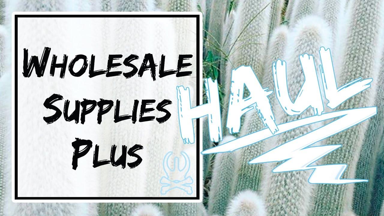 Wholesale Supplies Plus Haul | Beetle + Bones Apothecary