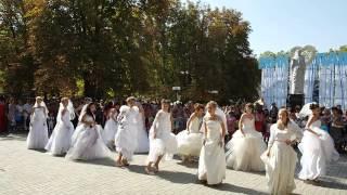 Парад невест в Николаеве