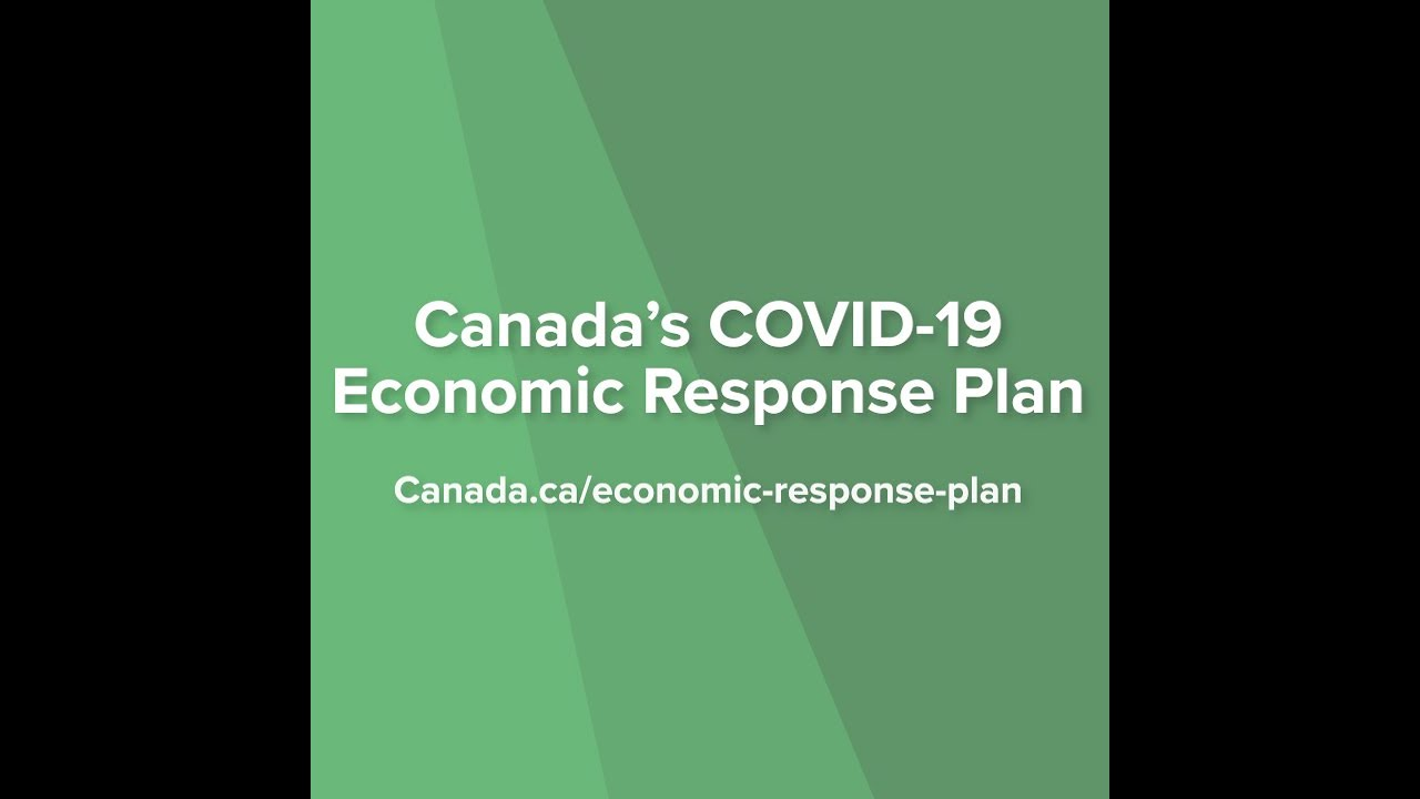 Canada's COVID-19 Economic Response Plan is helping ECCC program recipients
