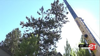 Bend church volunteer group collects firewood for future donations