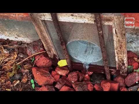 गुजरात के सूरत में रहने वाले स्रेहल ने बनाया इको होम | India |