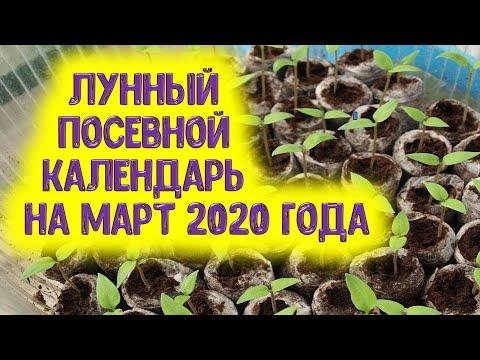 Лунный посевной календарь на март 2020 года. Астропрогноз для дачников и огородников на март 2020