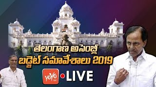 Telangana Assembly LIVE | Telangana Assembly Budget Session 2019 | Harish Rao | KCR | YOYO TV LIVE