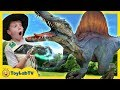 Dinosaurs Surprise Toy Hunt & Kids Family Game with Dinosaur Toys in Surprise Egg, Fun Kids Video