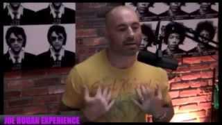 Joe Rogan on self-defence martial arts