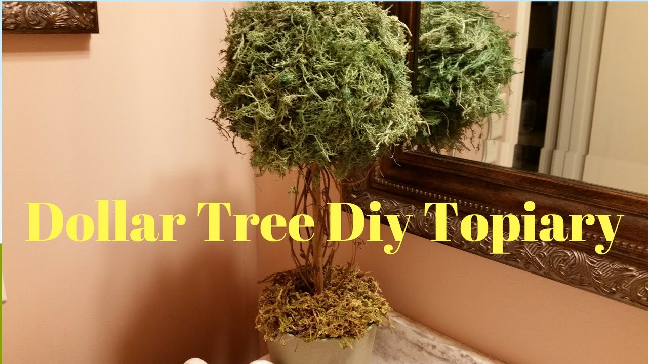 Topiary do it yourself 62