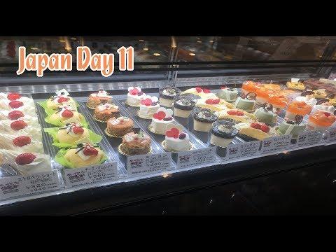 Japan Vlog [Day 11] - Shopping in Hokkaido, Karaoke, and MORE!