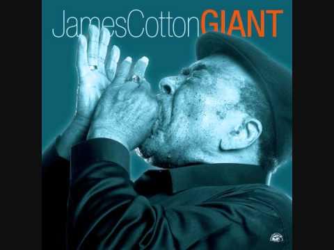Coast Blues   James Cotton