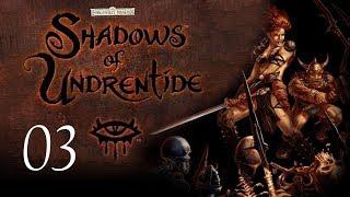 Neverwinter Nights: Shadows of Undrentide - 03 - The Journey Begins