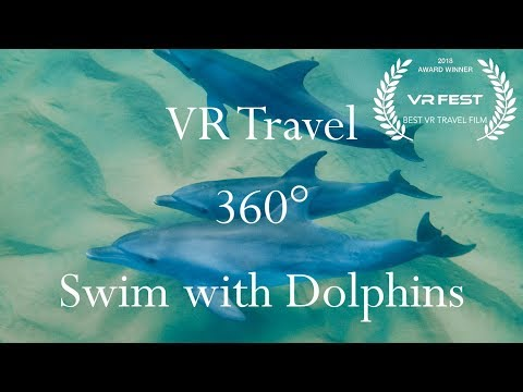 VR Travel - Swim with Dolphins in the Indian Ocean