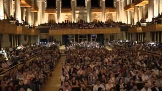 Pelo que o seu coração bate? | Luciana Fornari | TEDxSaoPaulo