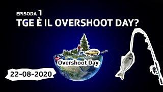 Tge è il Overshoot Day?