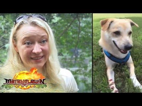 Matanglawin: Aspin Buddy's journey to Germany