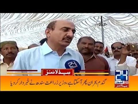 Again Flour Crisis In Country